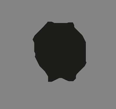 ruota-icone